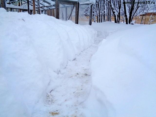 snegopad2